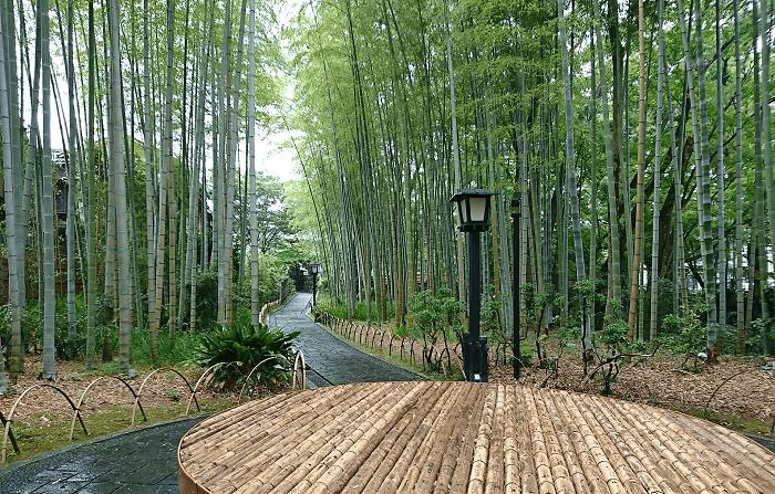 竹林の小径の入り口