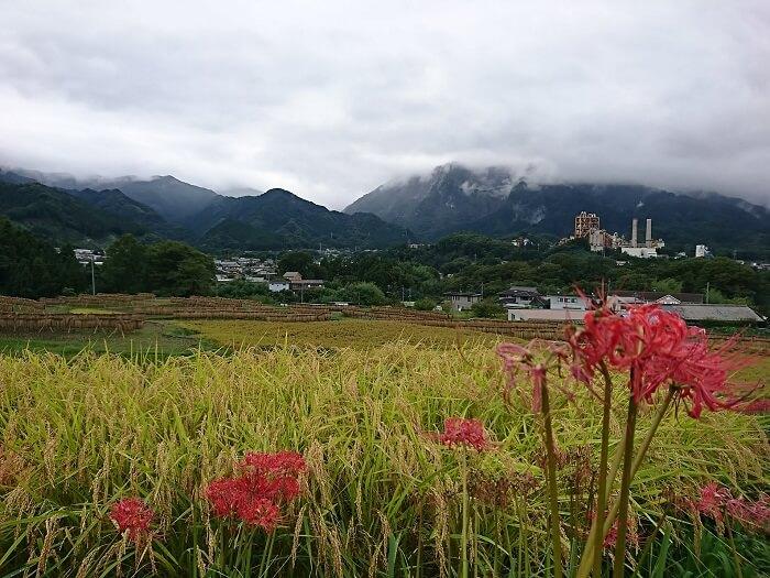 武甲山とセメント工場