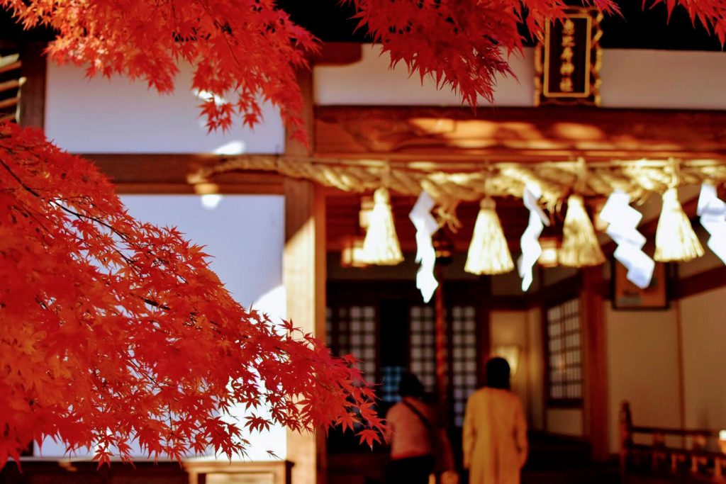 恵比寿神社の参拝風景