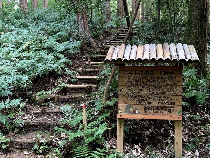 トトロの森1号地